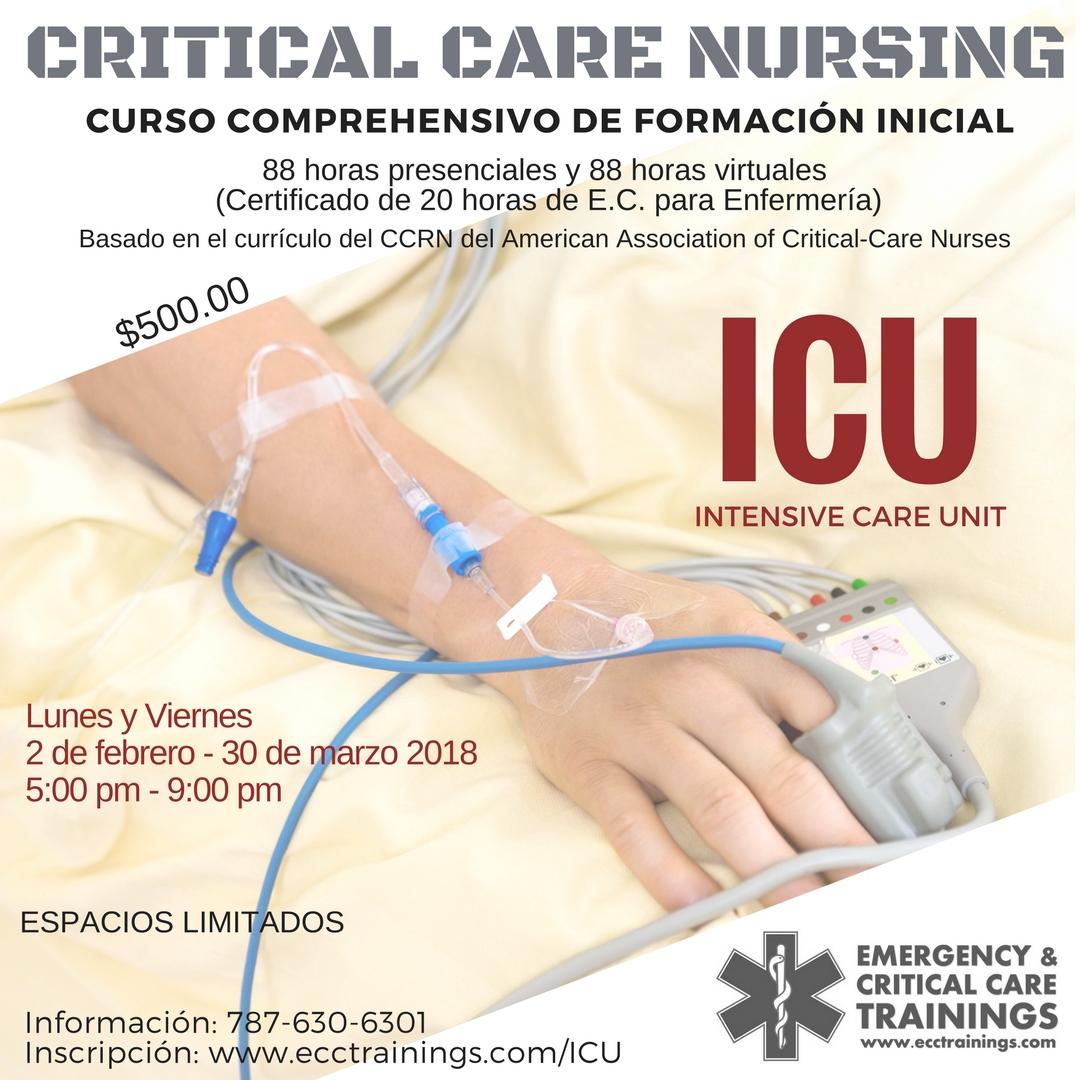 Cursos Archives - Página 2 de 6 - Emergency & Critical Care ...