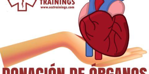 donación de órganos ecctrainings